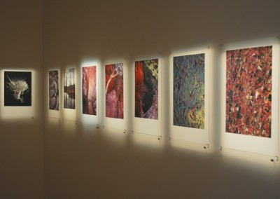 Shifting Ground Group Exhibition